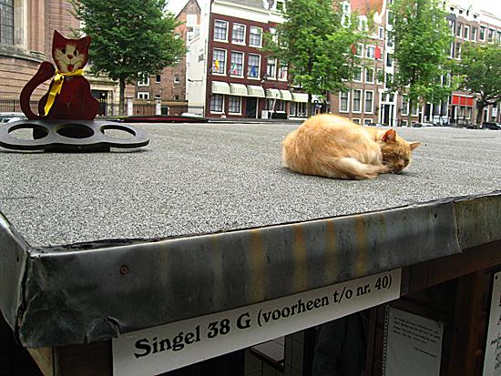 Amsterdam_poezenboot_(7).JPG