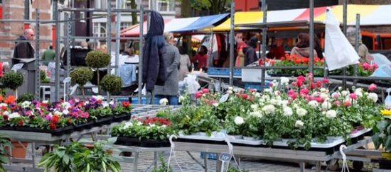 Denhaag_bloemenmarkt-1.jpg