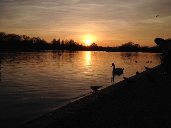 Londen_Hyde_Park