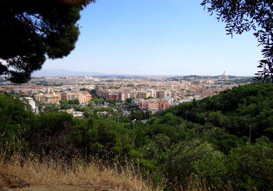 Rome_Monte-Mario-Roma-2012.JPG