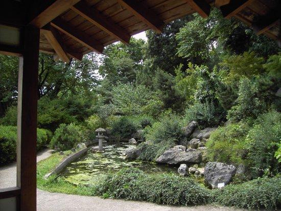 Rome_Orto_botanico_-_il_giardino_giapponese_2747.JPG
