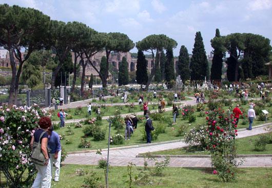 Rome_Roseto-Comunale-rozen