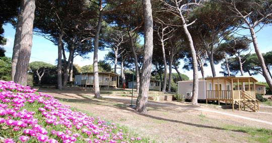 Rome_camping-parco-gallinara