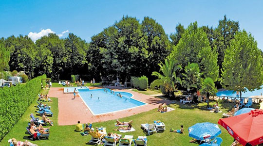 Rome_camping-pini