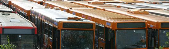 Rome_ov-bus.jpg
