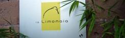 restaurant-limonaia-rome