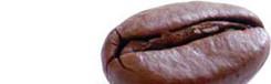 Caffetteria Dart