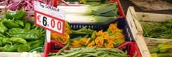 markt-rome-campo-de-fiori