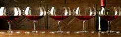 Wijnbarretjes