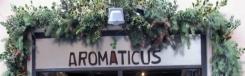 TIP: 10x biologisch eten in Rome