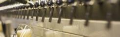 Bier proeven bij Queen Makeda